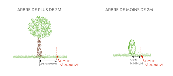 Distance minimum de plantation